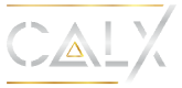 cropped-cropped-Calx-logo-Silver-text-1.png